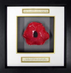 Queen-Alexandra's-Royal-Army-Nursing-Corps-Ceramic-Framed-Poppy