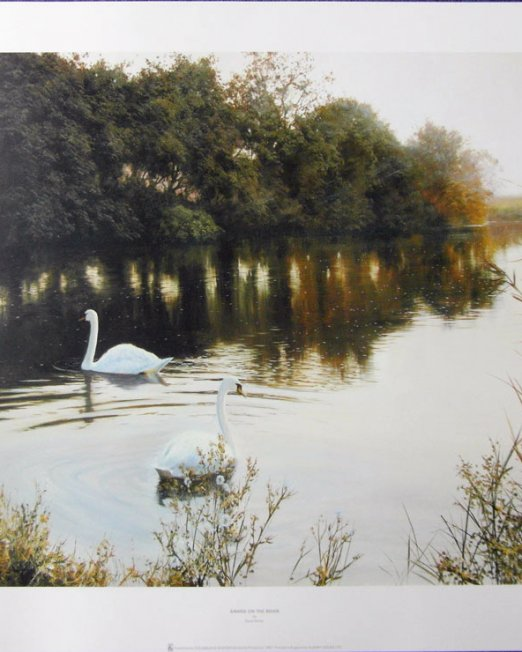 David-Smith-Swans-On-The-River
