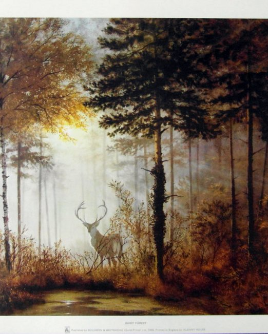 Gerald-Coulson-Quiet-Forest